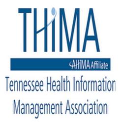 thima chicago millennial consultant & expert